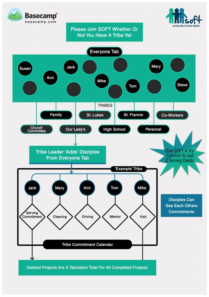 SOFT Process Diagram_3122013